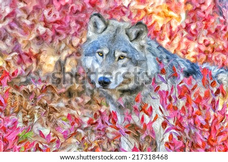 Wolf in fall blueberry bushes,oil painting - stock photo