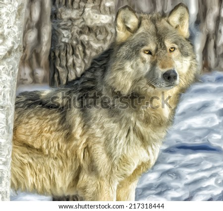 Wolf in winter forest - stock photo