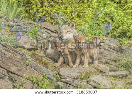 Wolf with two cubs at den site in Montana, digital oil painting