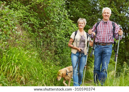 Woman and man walking together with dog in nature in summer - stock photo