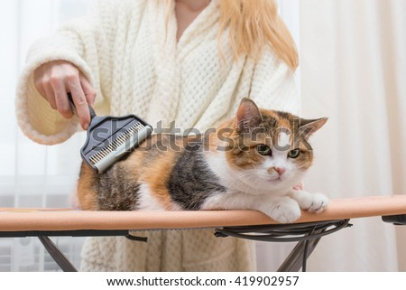 woman brushing cat