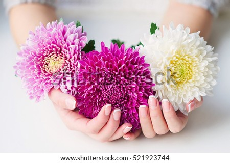 Woman cupped hands with beautiful French manicure holding pink and white flowers