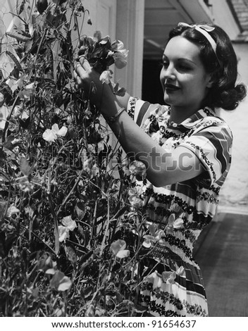 Woman cutting flowers from vine