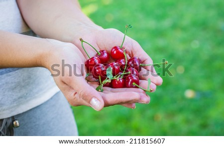 woman eats ripe red sweet cherries outdoors