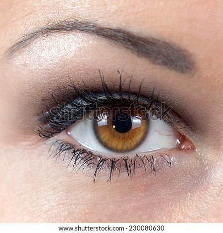 woman eye closeup, sharp image - stock photo