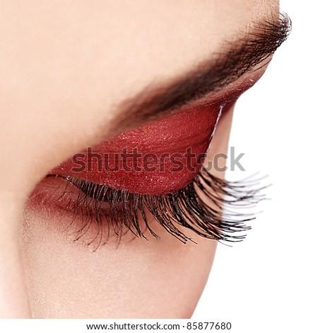 Woman Eye with  Long Eyelashes. Isolated - stock photo
