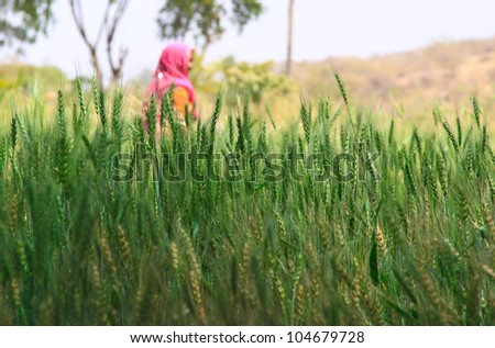 Woman Farming - stock photo
