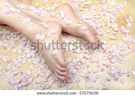 Woman feet and rose petals closeup - stock photo
