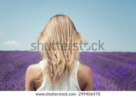 woman field lavande - stock photo