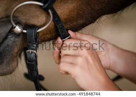 woman fixing horse bridle with snaffle bit, closesup