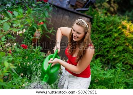 Woman gardener watering the flowers in her garden in summer - stock photo