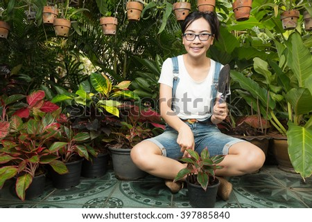 Woman gardening equipment and garden plants. Decorative garden care - stock photo