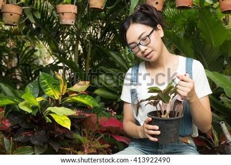 Woman gardening equipment and garden plants. Decorative garden care - stock photo