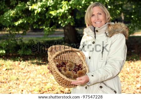 Woman gathering chestnuts - stock photo