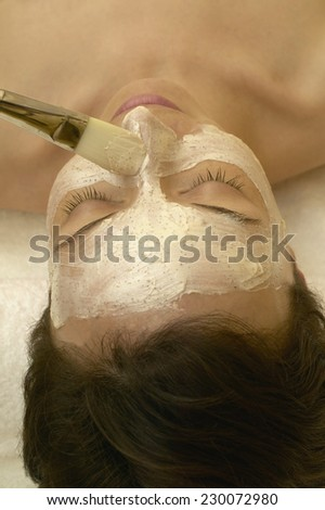 Woman Getting Facial Mask Applied with Brush - stock photo