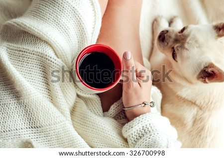 Woman Hand holding a cup of coffee in bed and next to it is a dog - stock photo