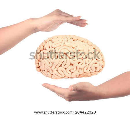 woman hand holding human brain handmade plasticine isolate on white background with clipping path - stock photo