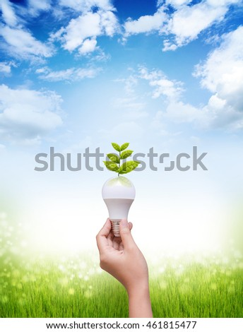 Woman hand holding LED bulb on blue sky and green field