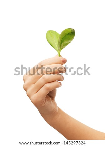 woman hand with green leaves in a heart shape