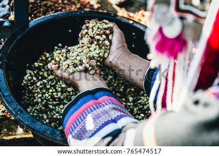 woman handful of fresh organic red coffee beans after harvesting