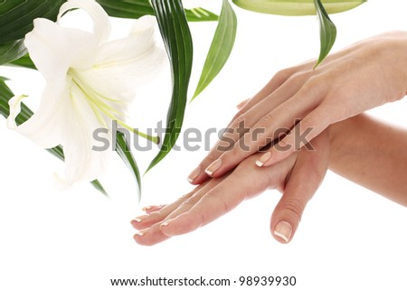 Woman hands and lilly flower over white background - stock photo