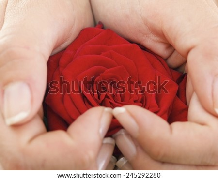 Woman hands heart with red rose petals - stock photo