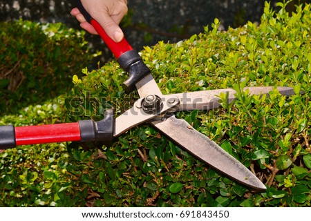 Cutting Bushes Stock Images Royalty Free Images Amp Vectors