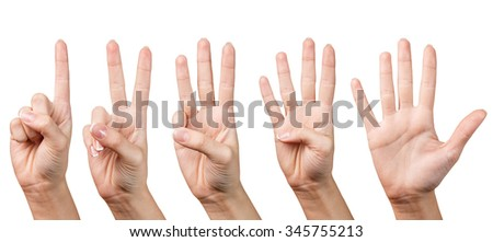 Woman hands isolated on the white background