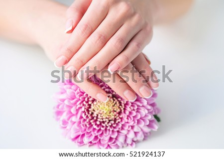 Woman hands with beautiful French manicure holding delicate pink flower