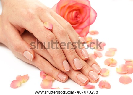Woman hands with beautiful rose and petals on white background, close up - stock photo