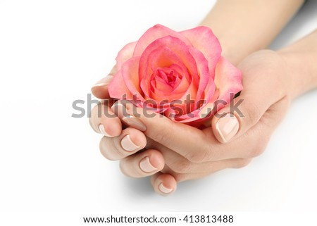 Woman hands with beautiful rose on white background, close up - stock photo