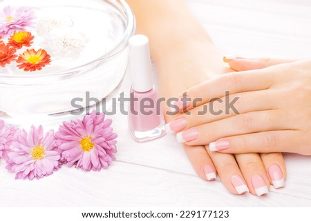 Woman hands with colorful chrysanthemum on a white