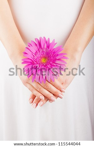 Woman hands with french manicure holding pink flower - stock photo