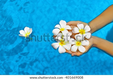 Woman Health Concept. Summer Relax. Female Hands Holding Tropical Spa Flowers, White Frangipani ( Plumeria Alba ) In Fresh Clear Swimming Pool Water. Wellness, Beauty, Freshness. Summertime Vacation - stock photo
