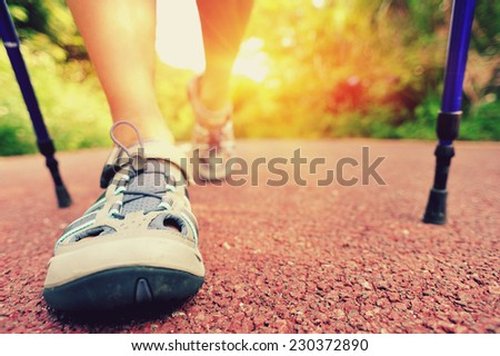 woman hiker hiking on forest trail  - stock photo