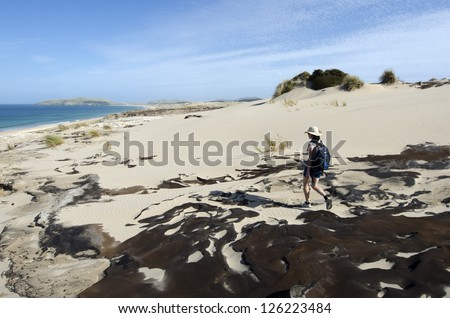 Woman hikes over the wild landscape of Henderson bay in Northland  New Zealand