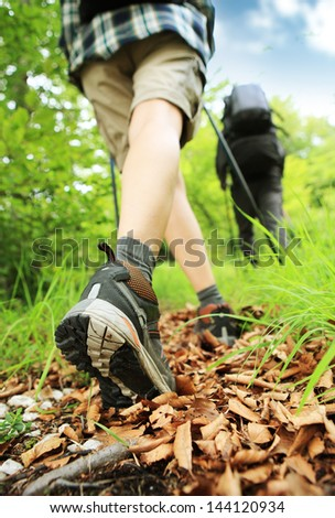 Woman hiking and nordic walking in forest. Rear view - stock photo