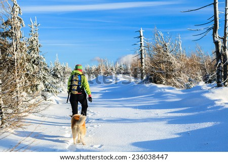 Woman hiking in winter mountains with akita dog, trekking in beautiful white nature on powder snow, blue clear sky.