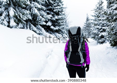 Woman hiking or trekking in white winter forest woods with backpack. Recreation fitness and healthy lifestyle outdoors in winter nature. Motivation and inspirational winter landscape. - stock photo