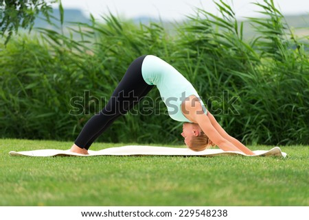 Woman holding a downward facing dog pose - stock photo