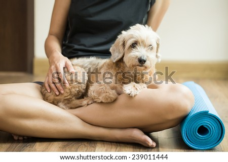 woman holding dog in yoga class - stock photo