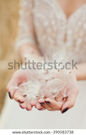 woman holding fluffy dandelion seeds - stock photo