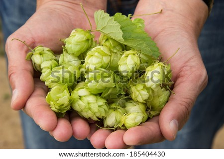 Woman holding hop in her hands