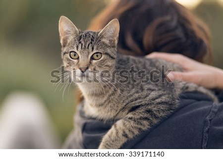 Woman holding in her shoulder a common cat, outdoors.