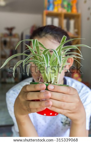 Woman holding potted plants - stock photo