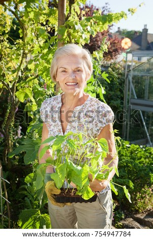 woman holding small green bean plants.