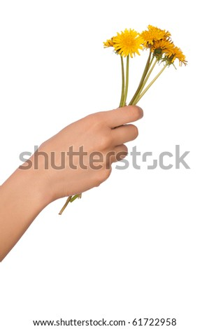 woman holding yellow dandelions in the hand