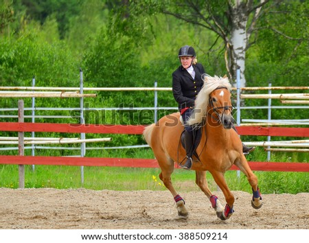 Woman horseback riding and showjumping - stock photo