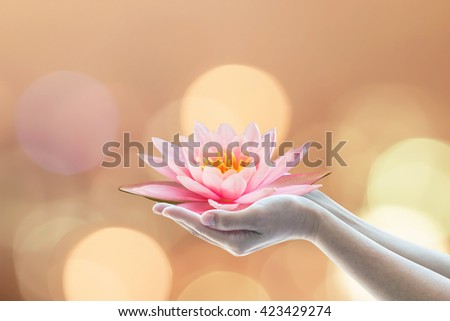 Woman human prayer hand holding lotus water lily flower worship Vesak Vesakha day  Buddha's birthday concept: Buddhist holy bringing happiness concept: Full moon gold candle light bokeh background  - stock photo