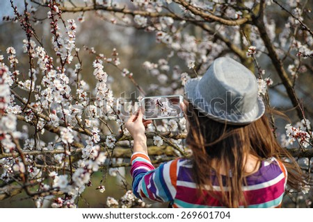 woman in a hat makes a photos on smartphone flowering tree branches in spring. - stock photo